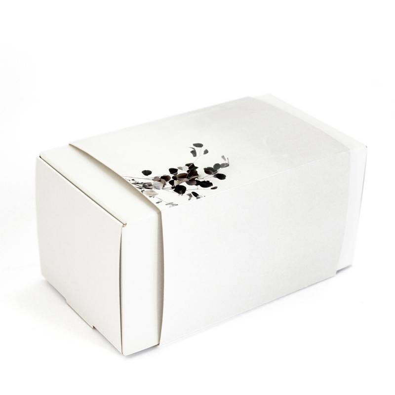 Brintel caja estuche con funda para laboratorios dentales diseño - diseño gráfico - artes gráficas - imprenta - etiquetas - bolsas - packaging - display - imagen - plv